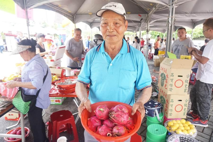 台南楠西72歲果農張伯凱受訪表示,今年火龍果1台斤批發價僅有10到11元,而且專收大顆不收小顆,導致果農慘賠。(李其樺攝)