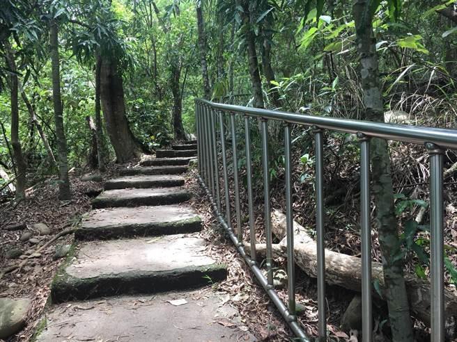 田中森林公園步道首度傳輸有野生水鹿攻擊山友事件。(謝瓊雲翻攝)
