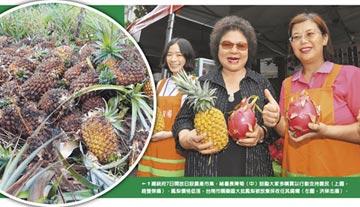 鳳梨產銷失衡 農民心淌血!菊點名農委會該檢討