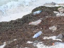 東沙島上官兵力行環保 不敵海漂垃圾群攻