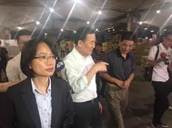 議會質詢吳音寧再成焦點  議員嗆:市場處長應移送監察院