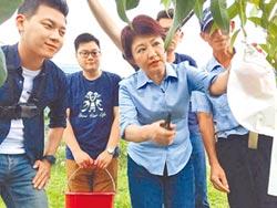 盧秀燕訪東勢果農 關心颱風災損