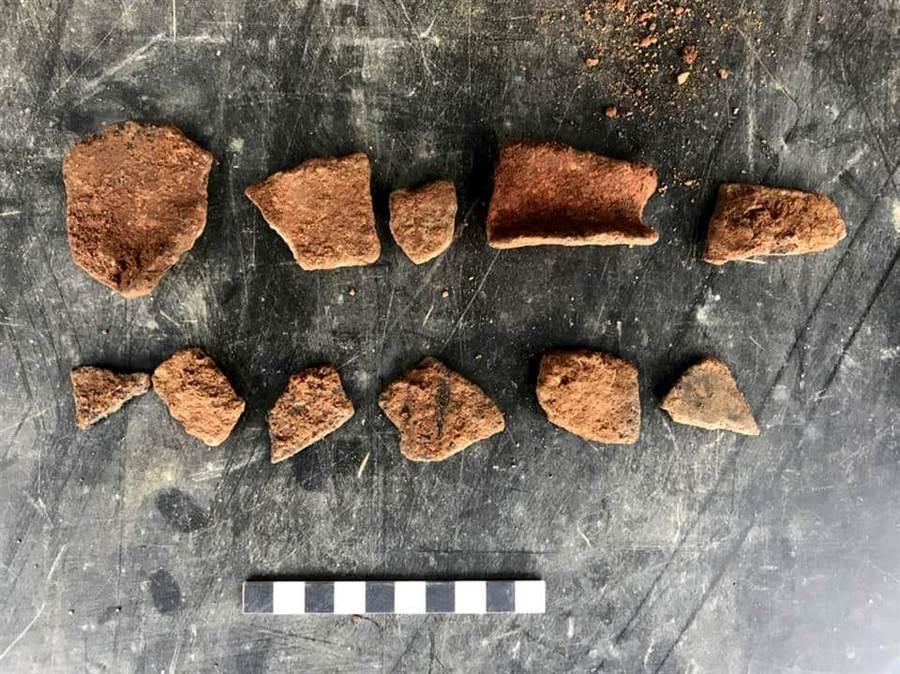 嘉義農試所荔枝園發現疑似山仔頂遺址的碎陶片。(廖素慧翻攝)