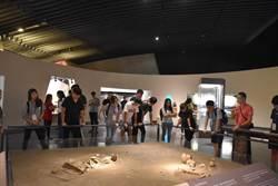 東南亞台校學生探索台灣文化  增進國家認同