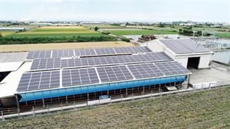 《其他股》中租促綠能發展,「全民電廠」再推新案