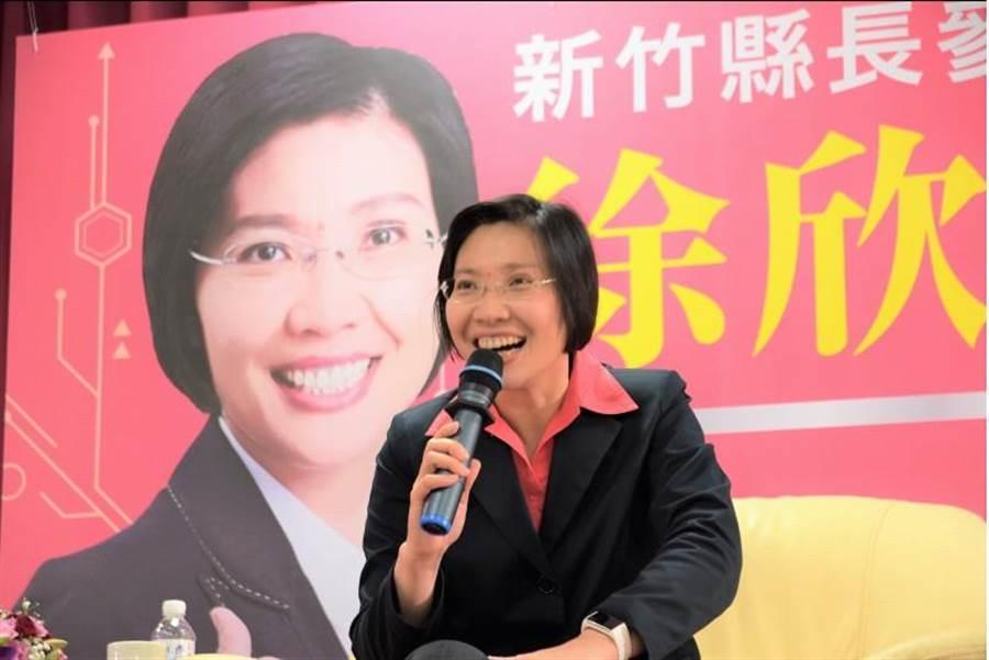 民國黨主席徐欣瑩投身政治十餘年,參選下屆新竹縣長選舉,15日舉辦科技後援會,爭取認同。(資料照片,莊旻靜攝)