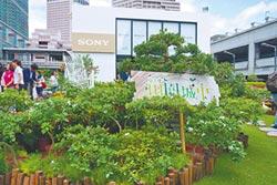 夏日到台北101 體驗田園城市