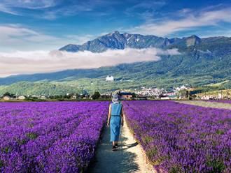 飛日本涼快旅遊地避暑!團體含稅不到2萬市場最便宜