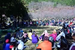 武陵谷地高山音樂會 音符飛揚國寶魚棲地