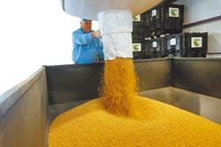 中美貿易戰 爽到巴西黃豆
