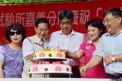 嘉義農業試驗所成立百周年  甘藷、鳳梨新品種曝光