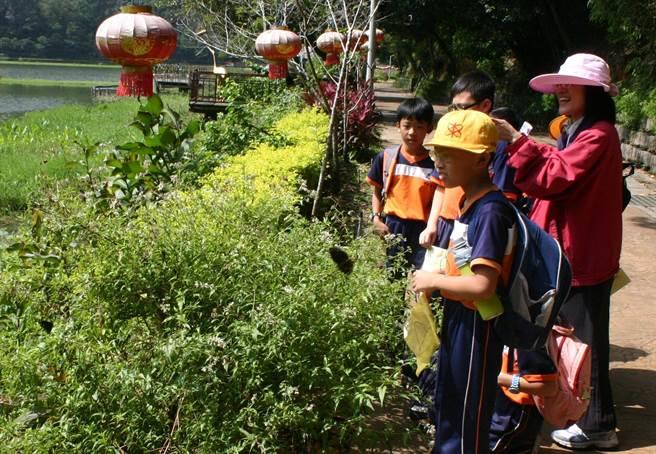南投埔里鯉魚潭風景區經由各界熱心認養栽植蜜源植物,讓遊客與戶外教學師生,常在鯉魚潭畔享受與蝶共舞之樂,並在寓教於樂中認識蝴蝶生態。(楊樹煌攝)
