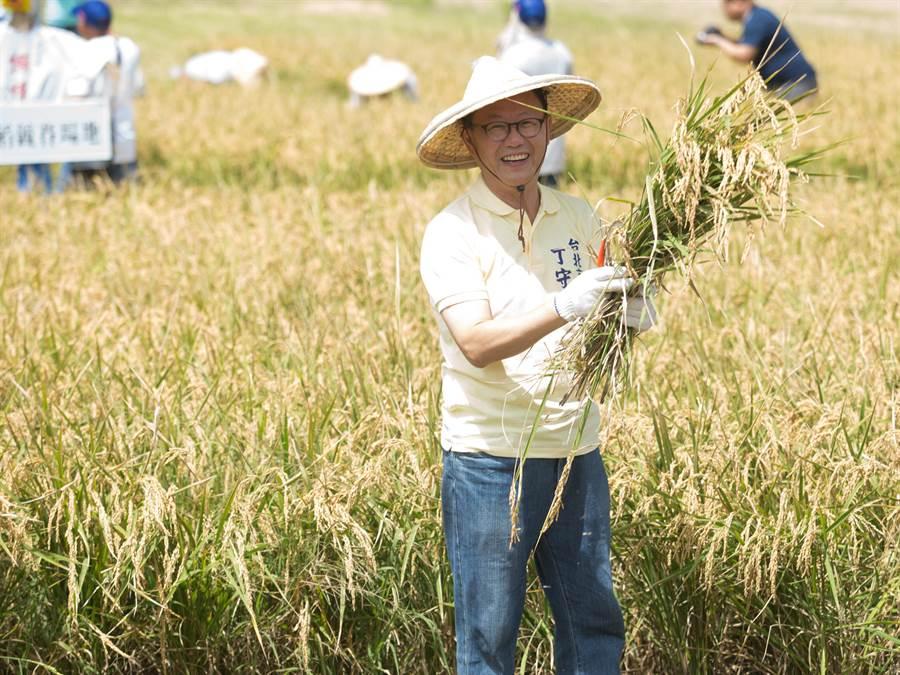 國民黨台北市長參選人丁守中日前參加北投割稻體驗活動。(圖/報系資料照,杜宜諳攝)