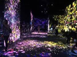 東京的數位藝術博物館給人全新奇幻的視覺享受