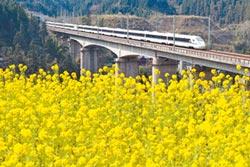 兩岸高鐵10年 從交通到旅遊主力