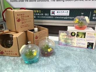 亞太農業技術展開展 試管花、LED集魚燈亮眼