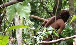 最後的亞馬遜部落民孤獨生活23年