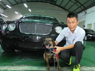 「米漿」成車廠守護犬 不怕鼠輩橫行