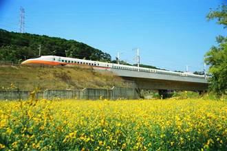 高鐵與紅利點數平台合作 可兌換8折車票優惠券