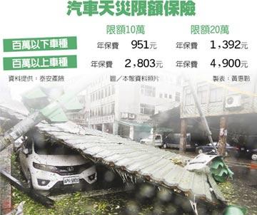 颱風毀愛車 加保天災險才賠