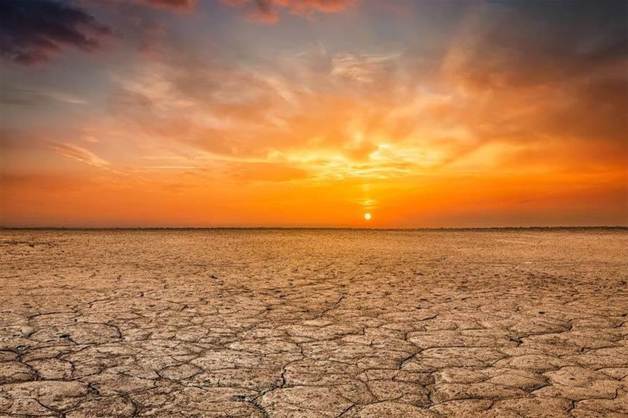 科學家認為,本世紀末的全球升溫可能使熱帶變成生態死亡區。(圖/布里斯托大學)