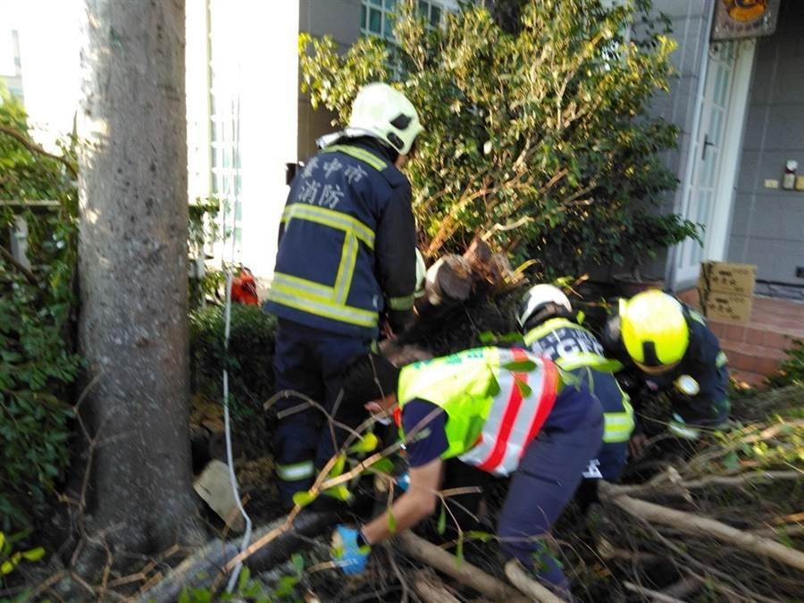 林姓屋主傍晚返家,赫見園藝工人遭樹幹壓住,趕緊通報消防隊員搶救。(王文吉翻攝)