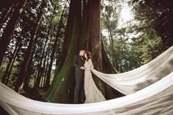 阿里山浪漫神木婚禮 限量12對新人報名
