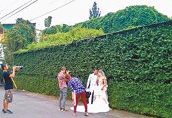 萬巒赤山綠牆 拍婚紗照夯點