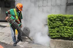 防堵新莊瓊林里登革熱 居家積水容器下周起開罰
