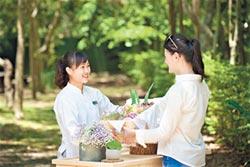 太魯閣晶英酒店 推野餐一日遊
