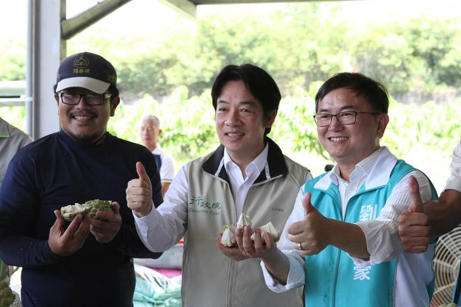 賴清德(中)到台東關心農業。(楊漢聲攝)