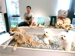 「狗然自得!」為毛小孩打造五心級寵物美容旅館