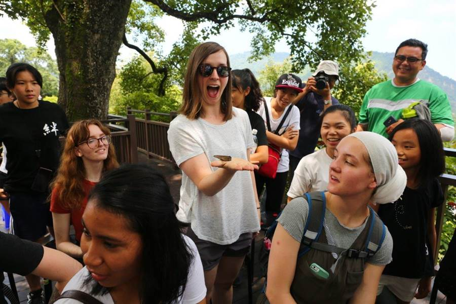西拉雅風景管理處將邀請國內外學者,對紫斑蝶觀光及永續發展進行交流研討。(西拉雅風景管理處提供)