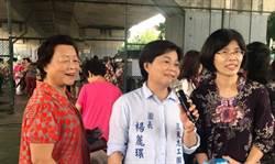 桃園》楊麗環宣布退出國民黨 桃園市長選情再添變數