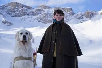 《靈犬貝兒》法國票房破3億 小男孩不離不棄大白熊犬