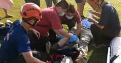 擎天崗牛隻襲擊遊客 美籍男子等2人受傷