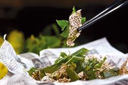 九層塔含毒素吃多會致癌?學者分析揭真相