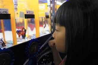 首屆觀賞魚推廣國際交流賽登場 小朋友盯看數百種觀賞魚爭豔競美