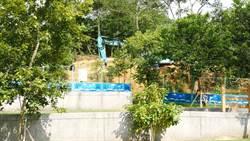 環保葬正夯 台南市民政局推動「植存」概念受歡迎