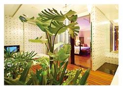 以「會呼吸的房間」 聞名全台 彰化桂冠精品旅館 旅客佳評如潮