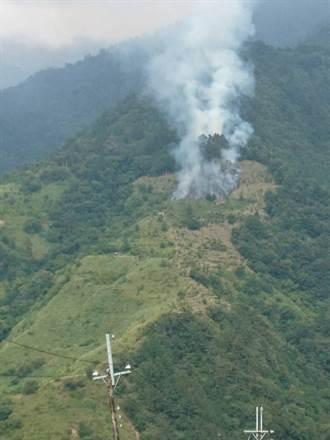 這裡也火大! 梨山森林大火直升機搶救 焚毀1.4公頃人造林