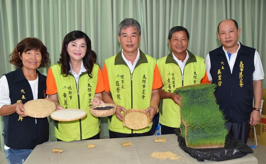 太保市農會總幹事黃麗貞(左二)指高品質稻米是太保市最主要的經濟作物。(呂妍庭攝)