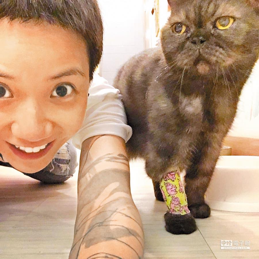 盧凱彤寫詞細緻,寫瑣事日常也寫社會怪象。圖為盧凱彤與貓。(取自盧凱彤臉書)