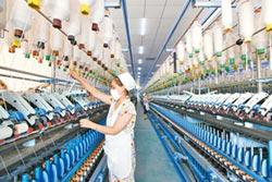 巴中種蒟蒻 促傳統產業轉型