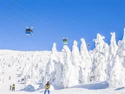 搶滑雪團早鳥優惠前... 關於滑雪你該知道的事