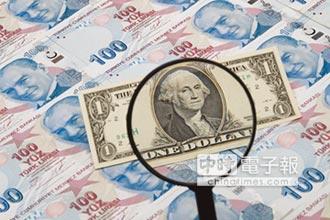 學者觀點-美元霸權下的 新興市場貨幣危機