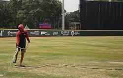 亞運》棒球比賽開轟會「打死人」