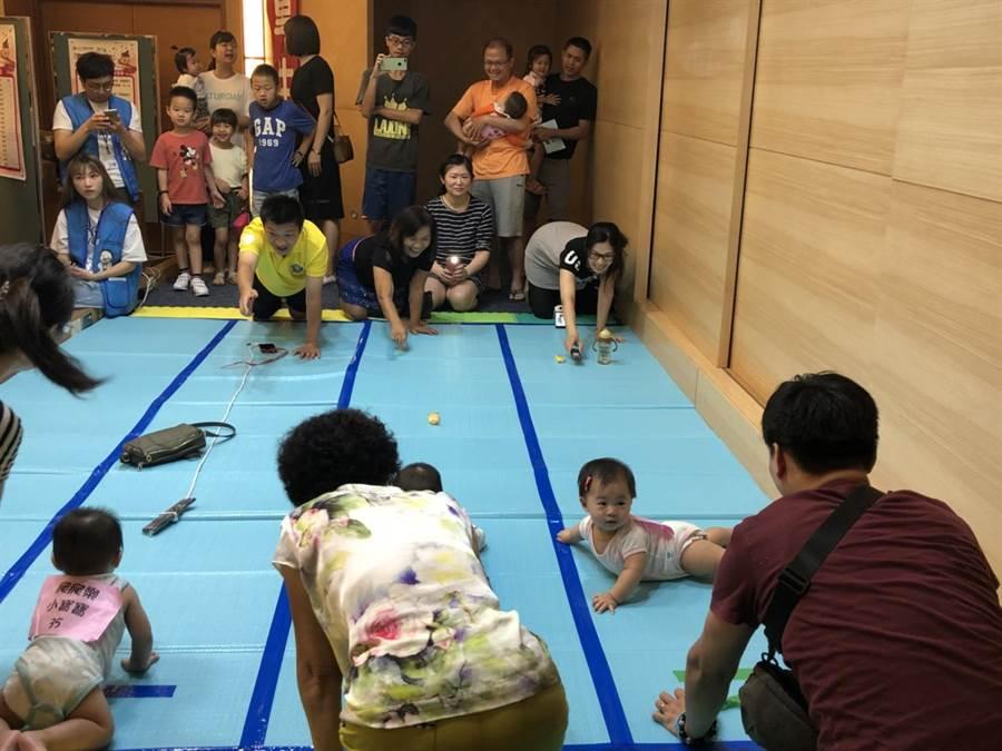 「童寶寶奧林匹克」運動會熱鬧展開,家長比競爬小寶寶還激動。(陳淑娥攝)
