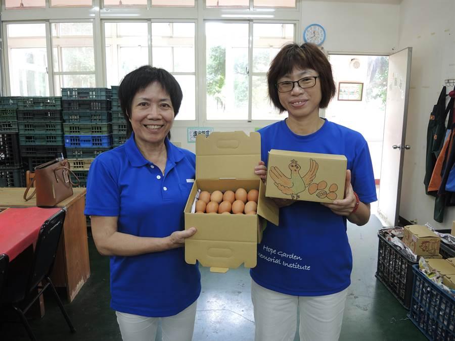 香園紀念教養院開闢養雞場,每日撿拾雞蛋提供院內烘焙坊製作糕點。(邱立雅攝)