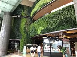 北車商圈會呼吸的牆!京站斥資百萬重塑植生牆
